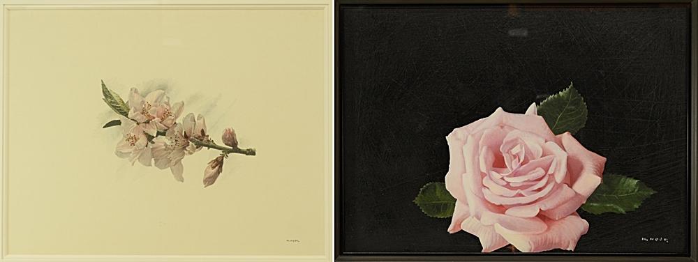 野田弘志 広島県福山市出身の画家