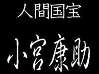 小宮康助 人間国宝 江戸小紋