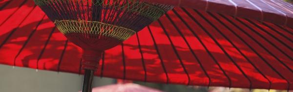 野点 番傘